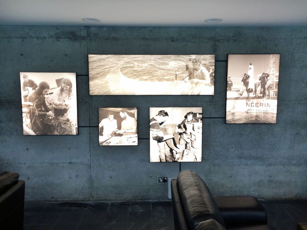 5 Rodney Robinson art exhibition images being illuminated by fabric frames